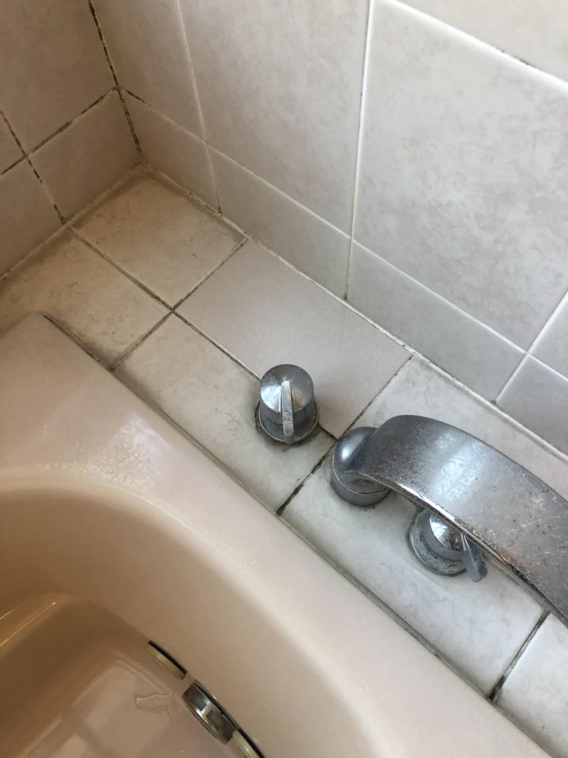 施工後(浴槽用蛇口ヨコ)