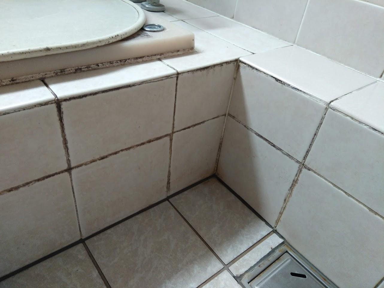 施工前(浴槽へり②)